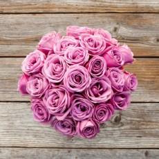 關於玫瑰的一些有趣知識(下)